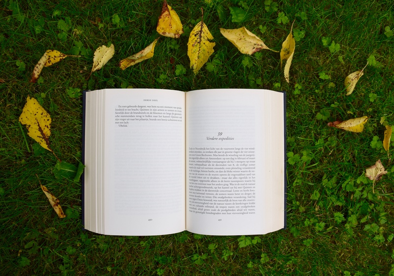 Why Every Author Should Read Daily